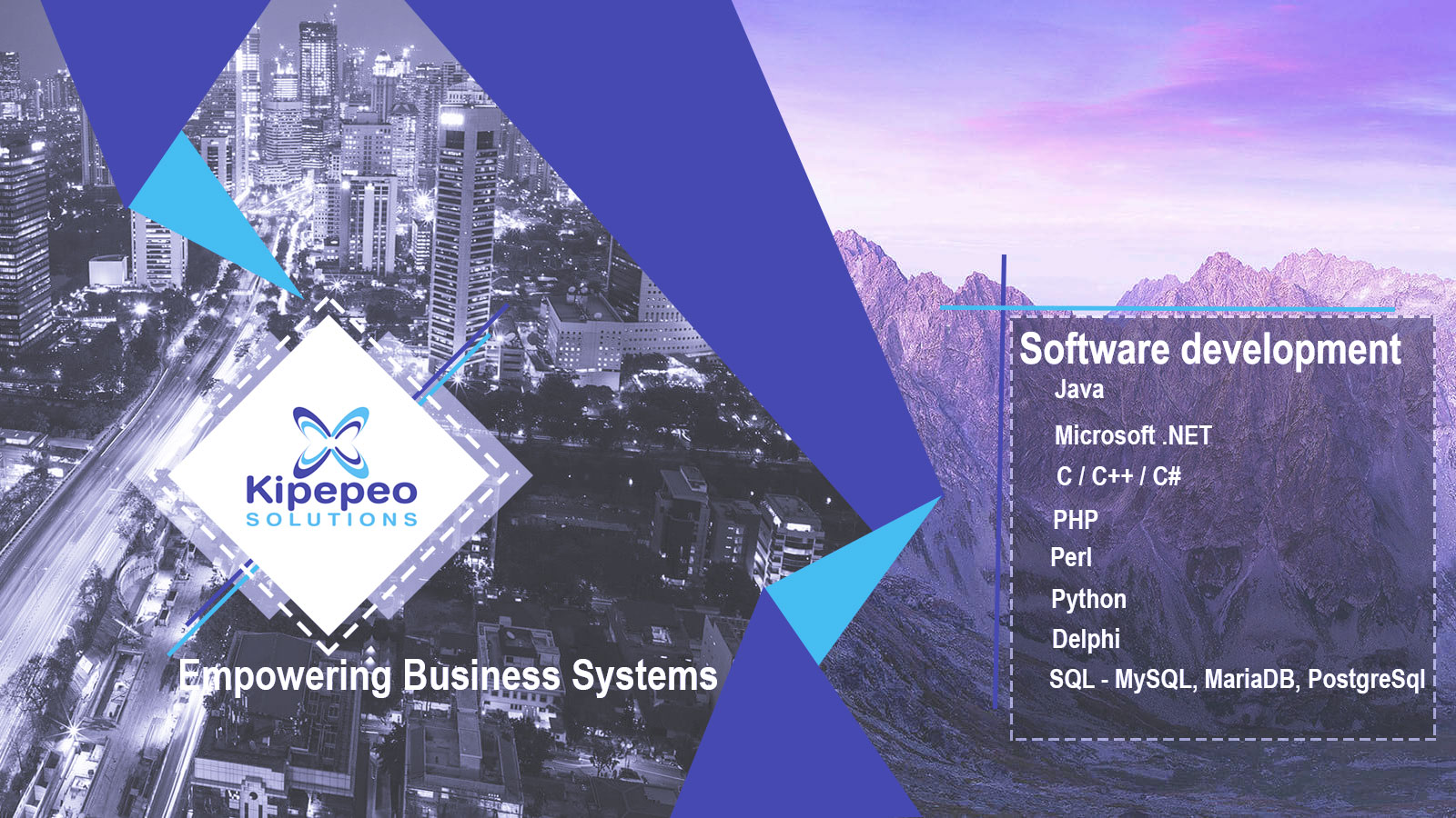 Kipepeo Solutions System Software Development