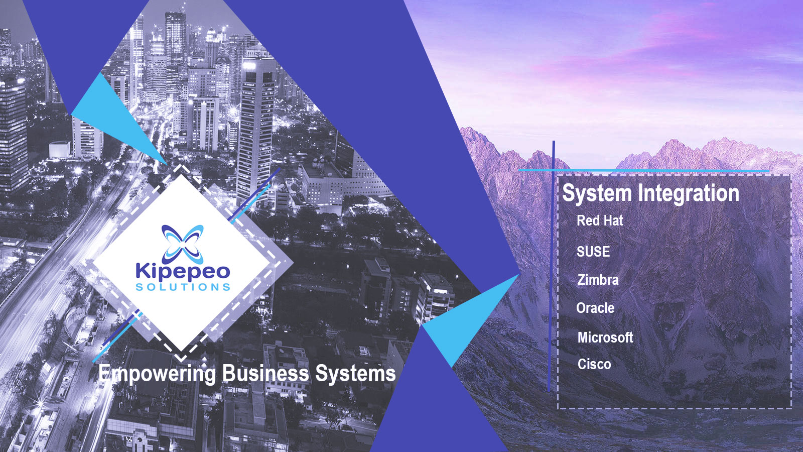 Kipepeo Solutions System Integration